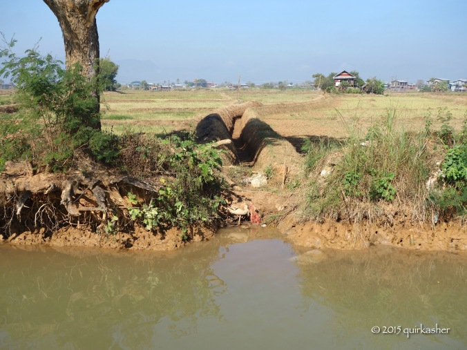 An irrigation ditch