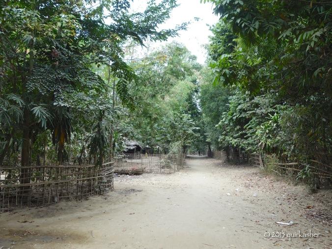 Walking through the weaving village