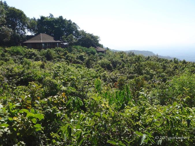 Villas of Mount Popa Resort
