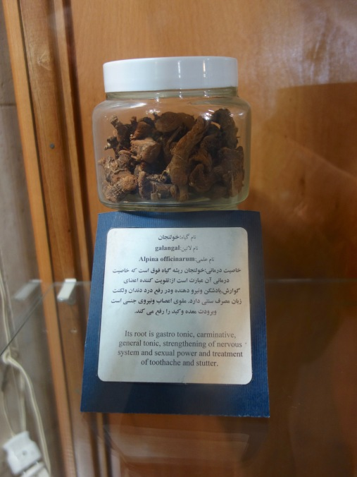 The uses of galangal as discovered by Avicenna
