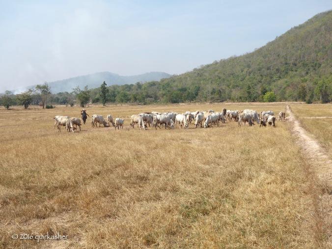 Along the way to Kamphaeng Phet